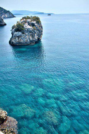Darko - Shark Island