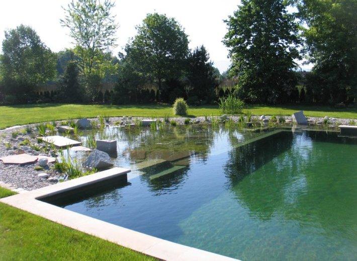 Oğal bitkili yüzme havuzlarında kimyasal madde kullanımı yoktur